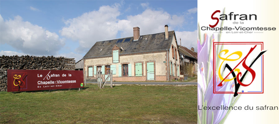 La safranière de la Chapelle Vicomtesse en Loir et Cher